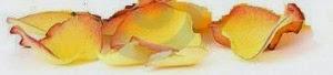 płatek-różane-róże-herbaciane-7930128-300x68