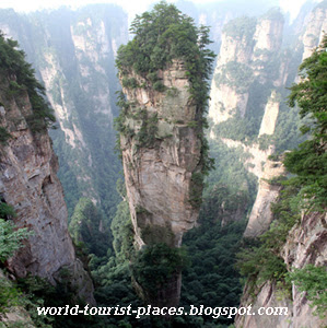 Tianzi Mountain - several peaks stand with different shapes and poses