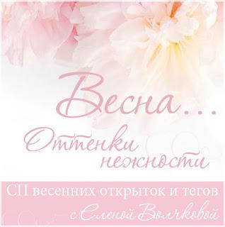СП с Еленой Волчковой