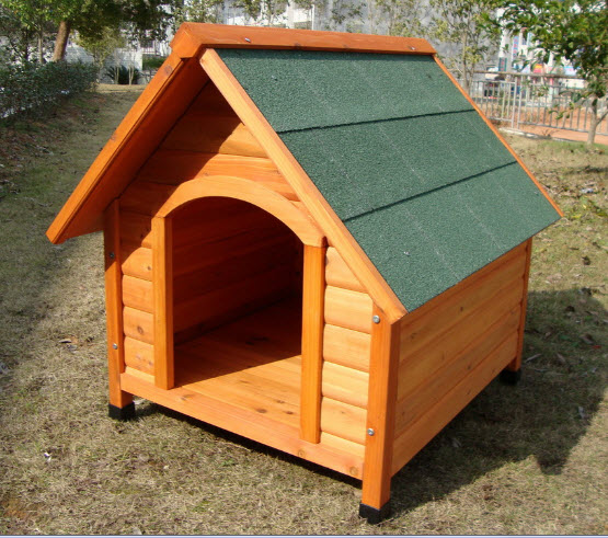 Options for cheap dog houses home pet care for Affordable dog kennels