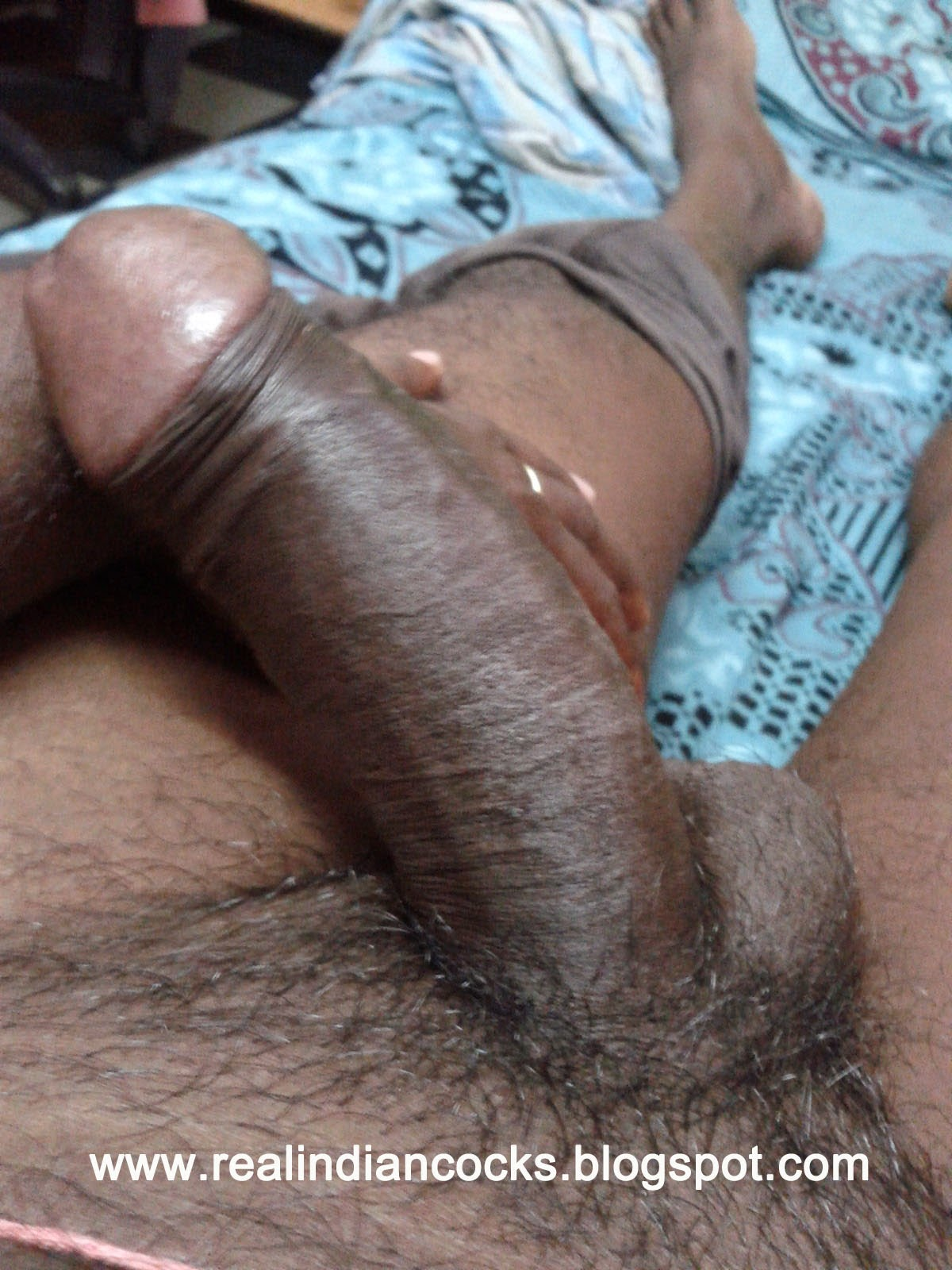 indian cock Biggest