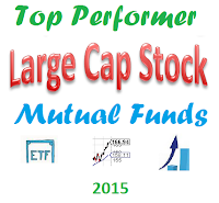 Best Large Company Stock Mutual Funds in 2015