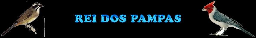 Rei Dos Pampas