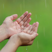 A person's hands catching rainfall