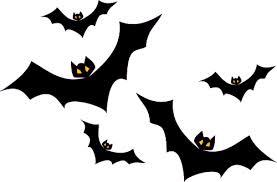 コウモリはウイルスに感染しにくい!  <br>インターフェロンと 「飛行」 が感染を予防