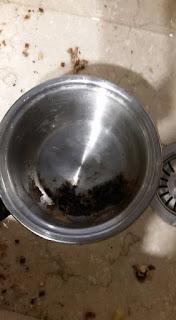 Il pentolino di acciaio bruciato