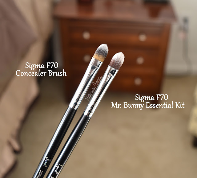 Sigma F70 Concealer Brush Review