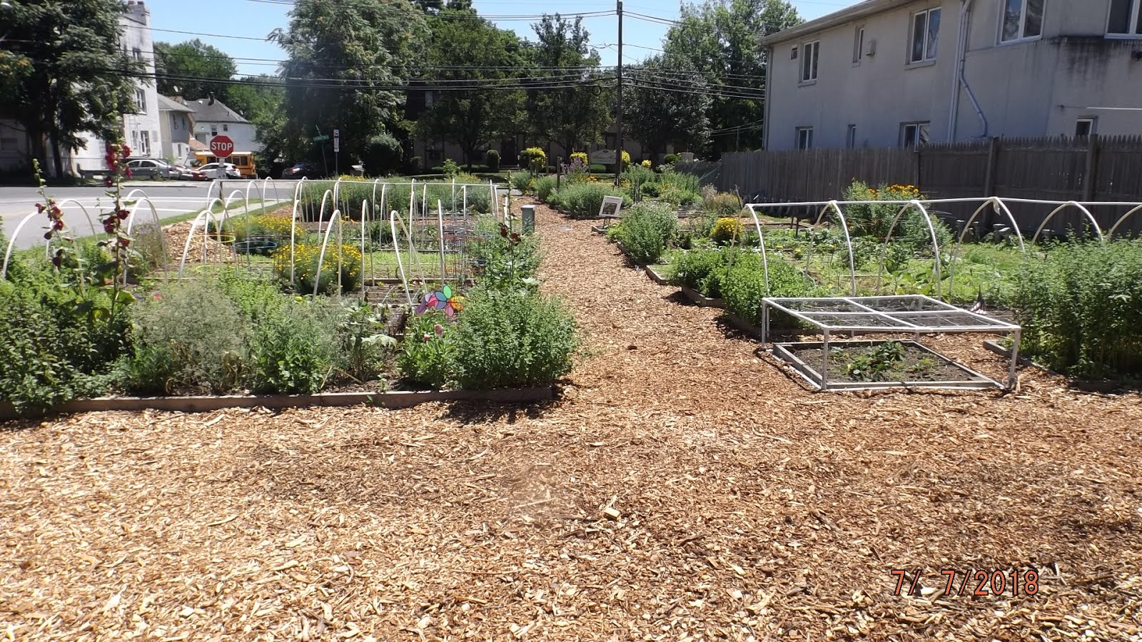 The Louie Bacoat Historic Community Garden