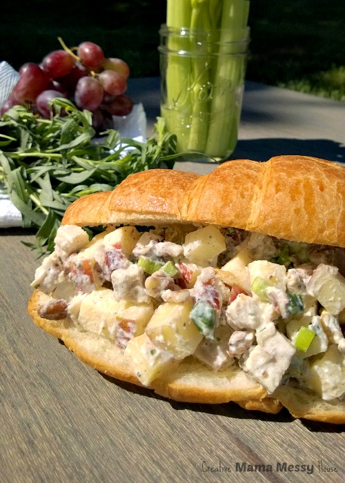 Perfect for Mother's Day lunch or a spa weekend retreat! Apple and Tarragon Chicken Salad with a tangy greek yogurt dressing (no mayo!)