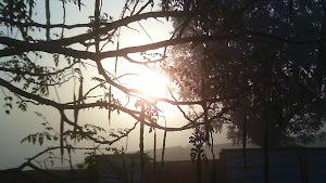 Sunrise through the dust...