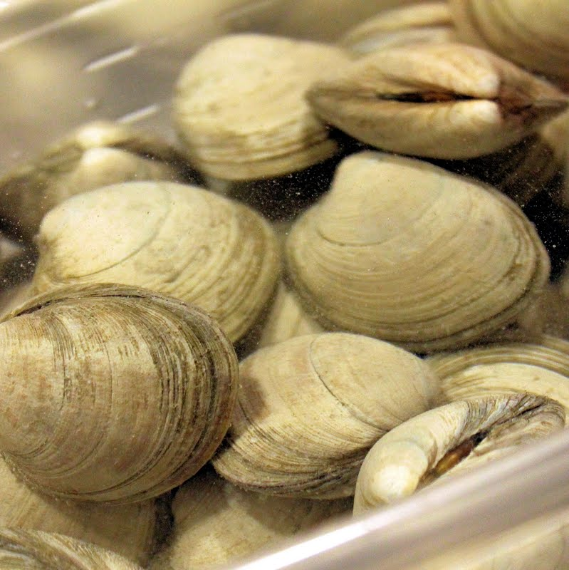 how to clean clams sand