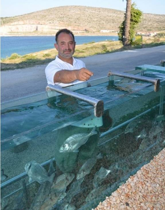 Mehmet Ali Gökçeoglu is a Turkish business man with plenty of cash and some very interesting tastes. He  made the decision his fence looked to unwelcoming, boring, ugly, and ripped it out and had it replaced with a 165 foot long aquarium fence that encircles his entire yard. The aquarium is stocked with massive amounts of fish, a cleaning and filtration system, and provides a security wall that is beautiful, but probably not secure. The offset the reduction in security Mehmet installed cameras, added security features, and has the fence monitored around the clock. This is not Mehmet's only venture into incredible aquariums. The wall is impressive, but the concept continues on into his home, which you can learn more about by visiting his Facebook page.