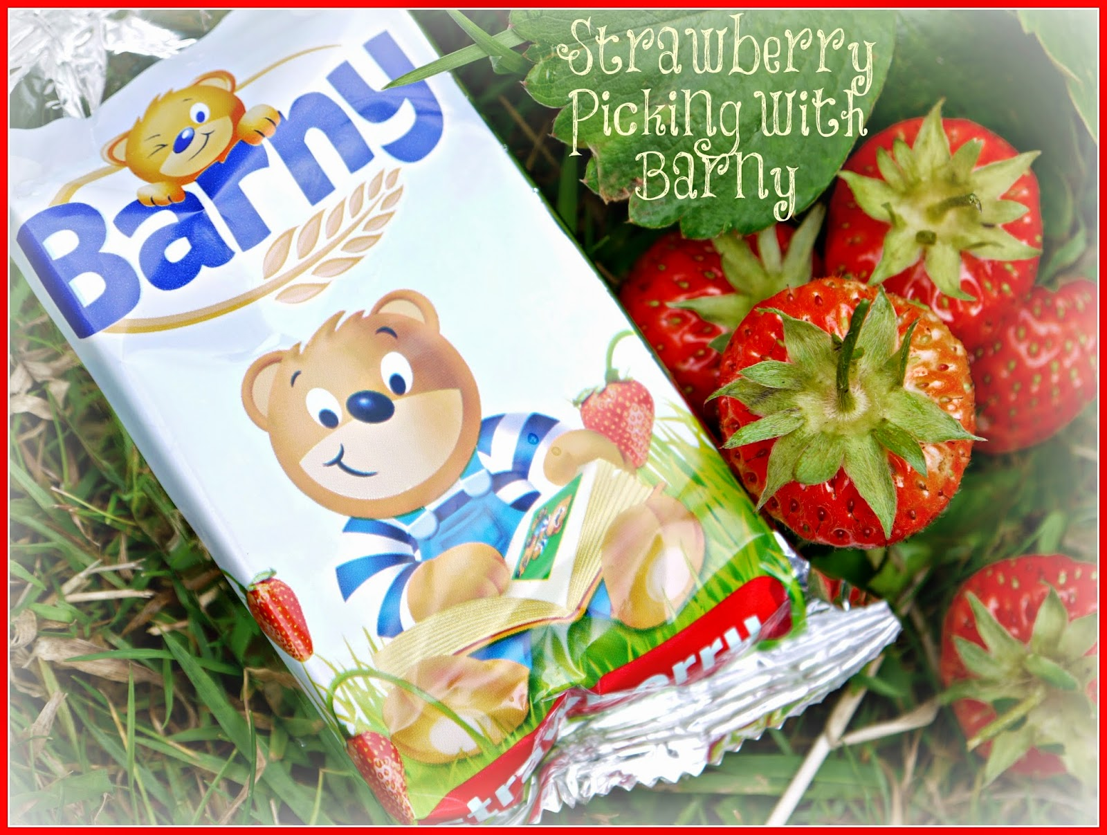 Barny, strawberry