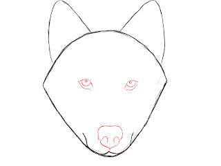 How To Draw A Wolf Step By Step Draw Central