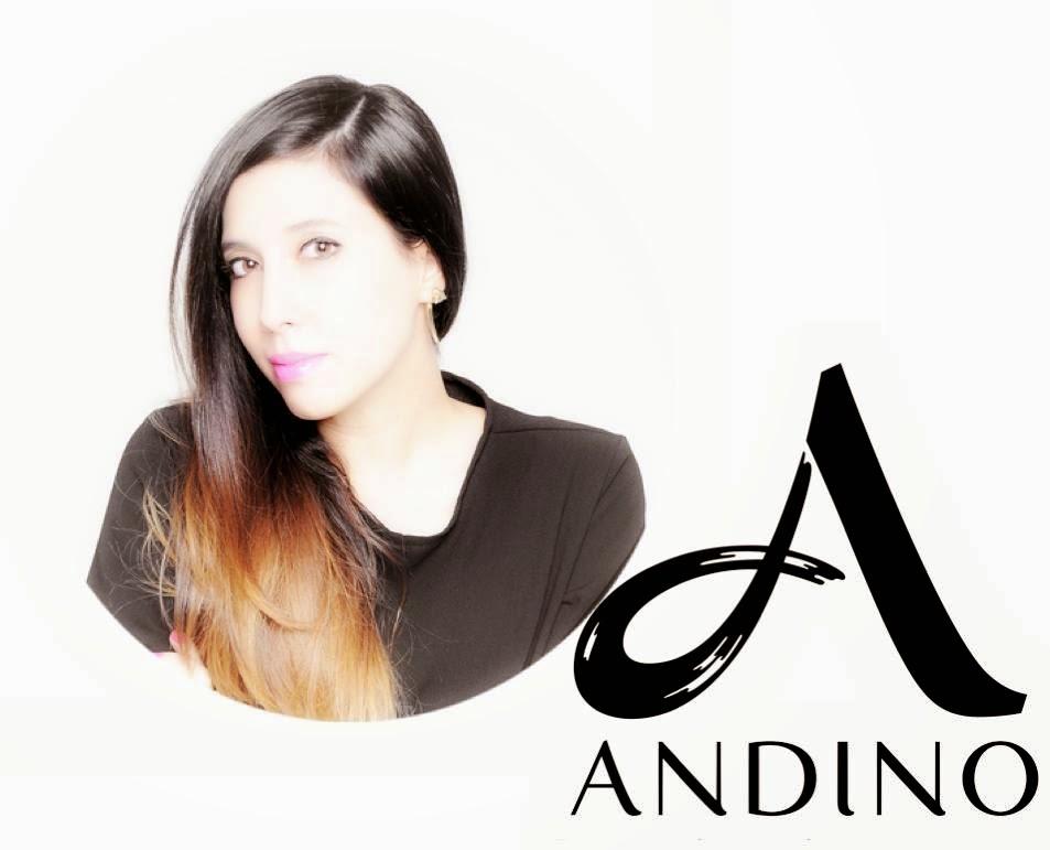 BLOGGER ANDINO