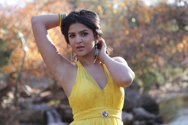 Deeksha Seth Movie Pics 2