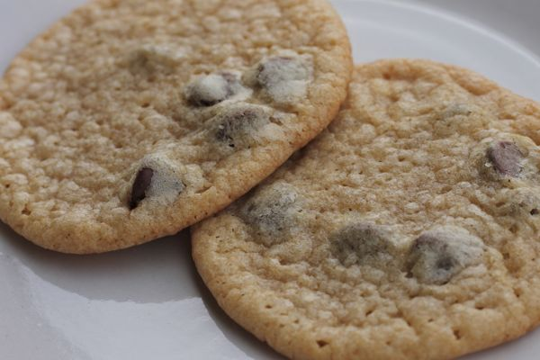 Cookie Jar Treats: Soft and Chewy Chocolate Chip Cookies