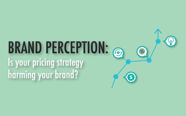 Brand Perception: Is Your Pricing Strategy Harming Your Brand? (Infographic) | Visualistan