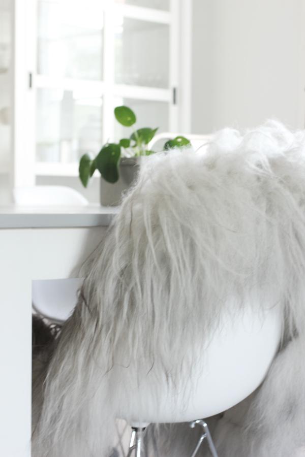 isländskt fårskinn, webbutik, webbutiker, webshop, inredning, vitt, nettbutikk, nettbutikker, elefantöra, växt, växter, inredningsblogg, annelies design interior,