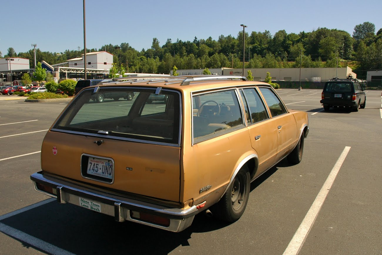 Old Parked Cars 1980 Chevrolet Malibu Classic Wagon