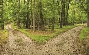 Cara Memilih Jalan ( kisah Abu Nawas)