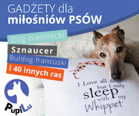 PupiLu.pl