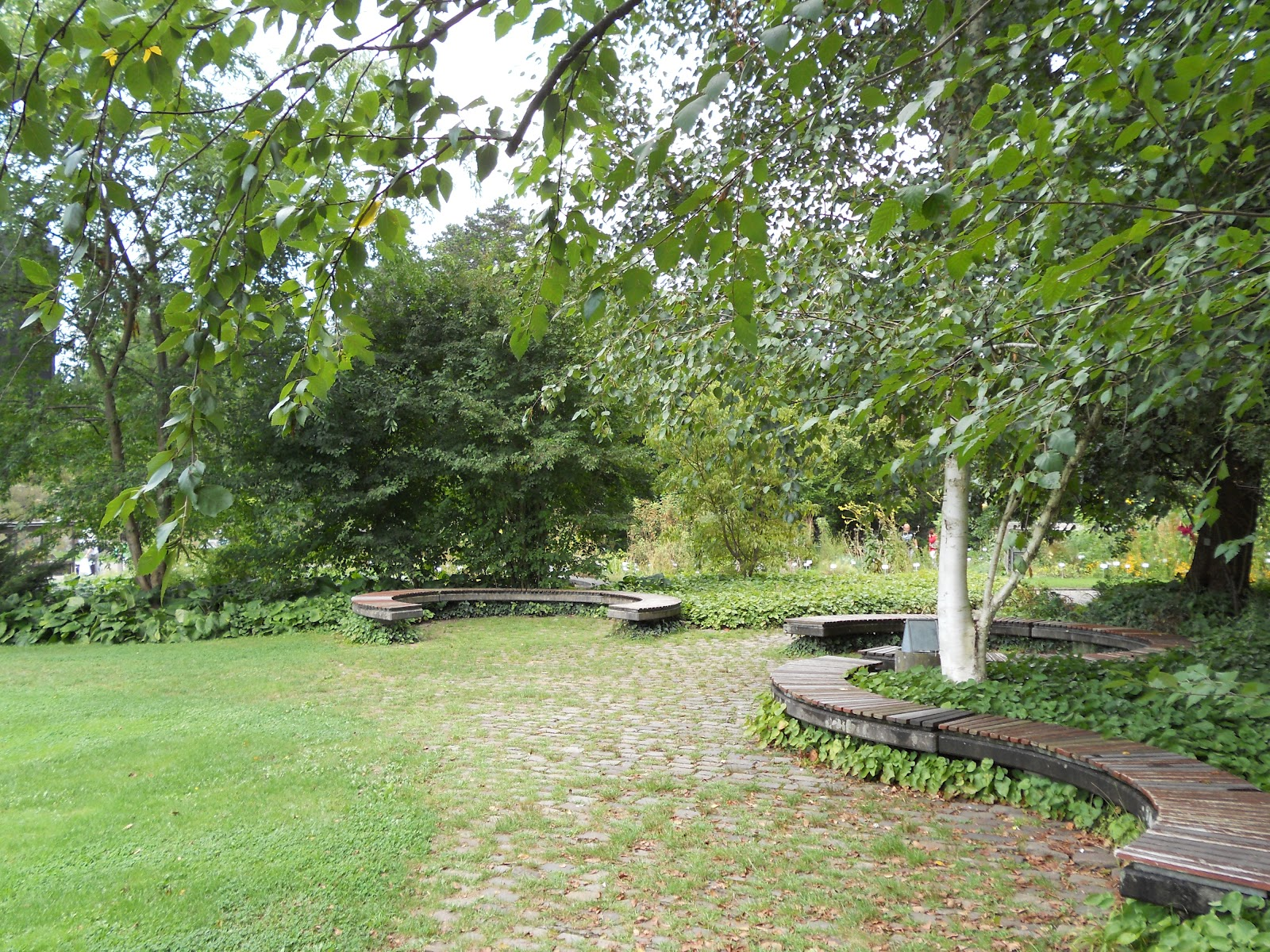 jardineria eladio nonay la salud de los jardines