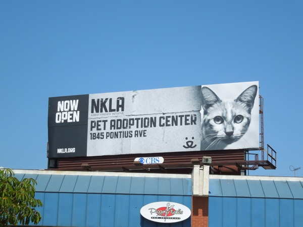 NKLA Pet adoption center cat billboard