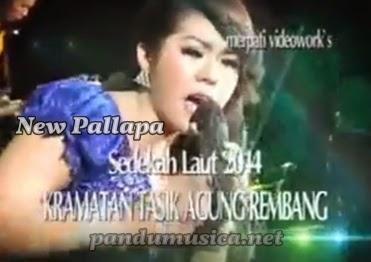 OM New Pallapa Live Tasik Agung Rembang 2014 [Full Album]