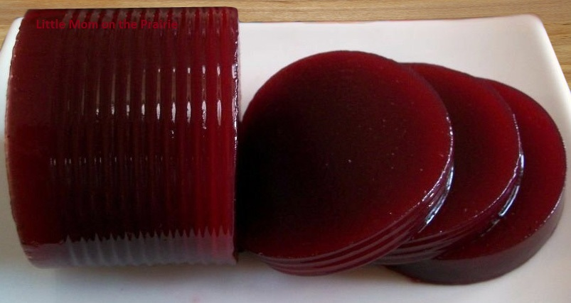 ... Saves Money : Make Your Own (DIY) Jellied Cranberry Sauce in a Can