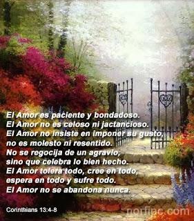 Frases De Amor: El Amor Es Paciente Y Bondadoso El Amor No Es Celoso Ni Jactancioso El Amor No Insiste En Imponer Su Gusto