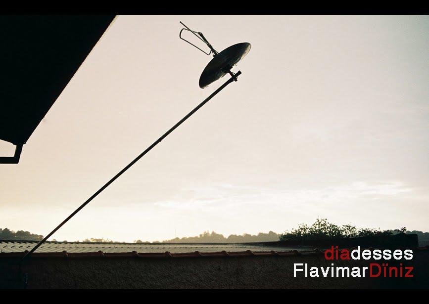 Flavimar Diniz