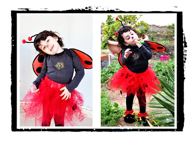 ladybug costume for Purim