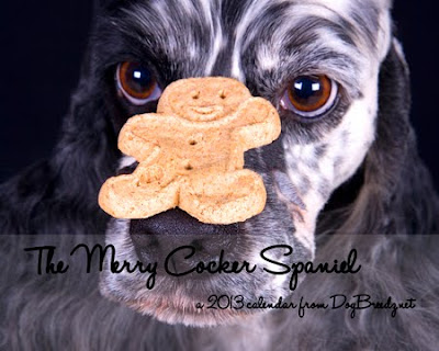 2013 Merry Cocker Spaniel wall Calendar from DogBreedz.net