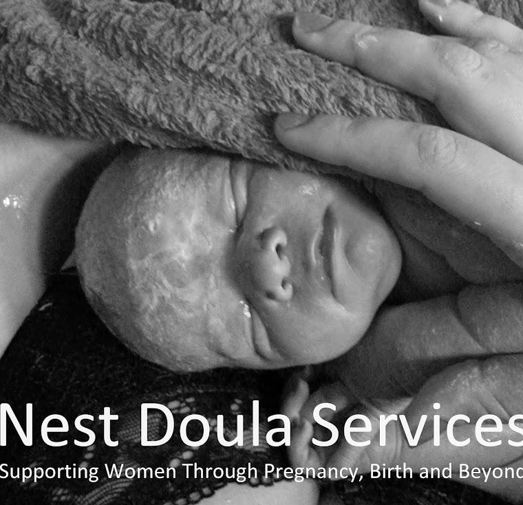 Nest Doula Services