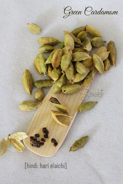 Spusht | Indian Pantry Essentials: Green Cardamom | Hindi: Hari Elaichi