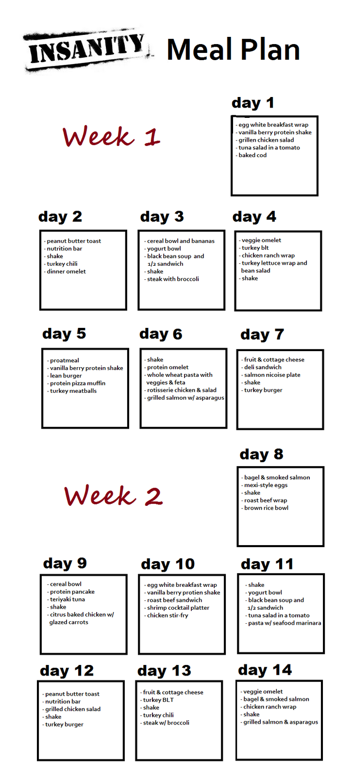 Insanely_Sara: Insanity Day 1 + My 2 Week Insanity Meal Plan