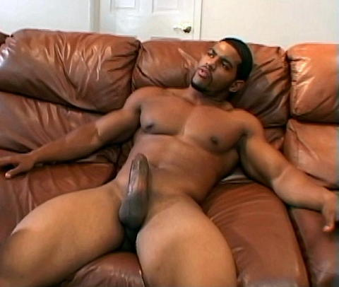 Black Mixed Guys Nude