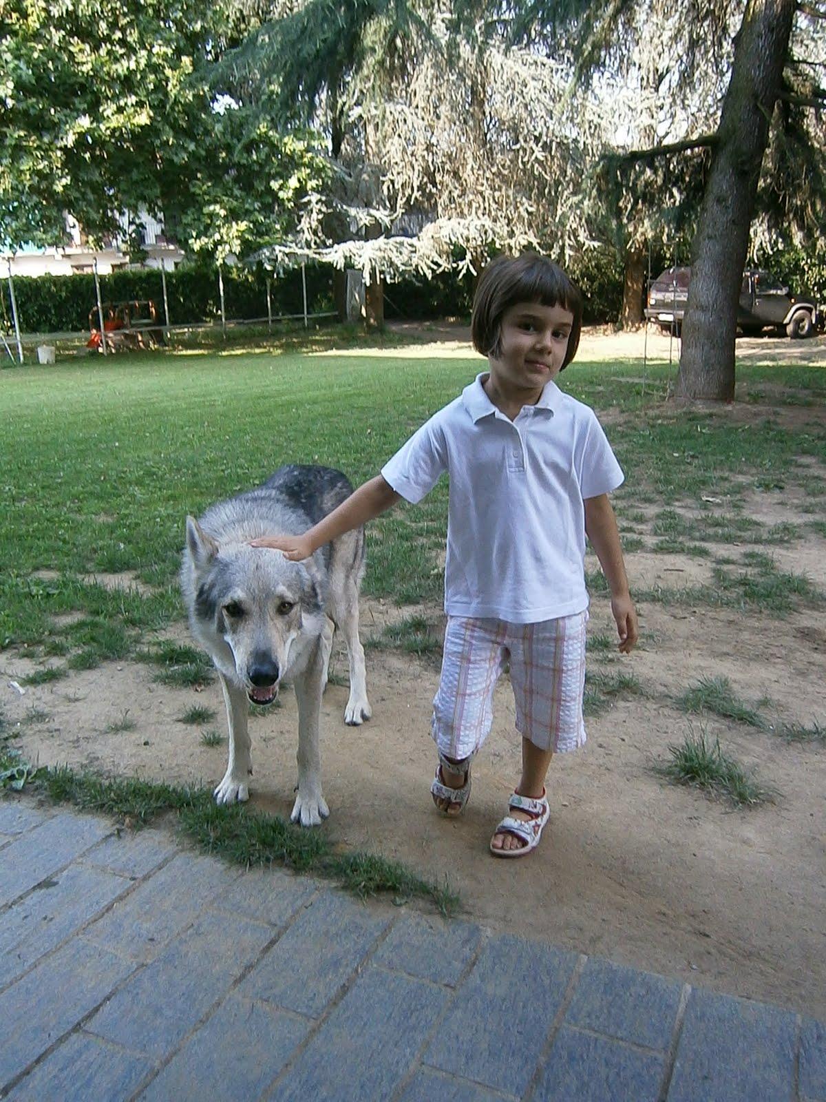 Katia verza educare un cane giocando - Educare il cane a non salire sul divano ...