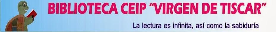 """BIBLIOTECA CEIP """"VIRGEN DE TISCAR"""""""