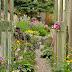 Virágoskert a szobaajtók mögött.
