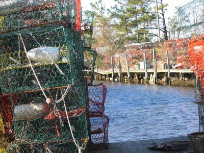 Buster Crab S Rhode Island