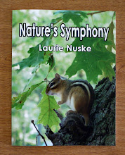 Nature&#39;s Symphony