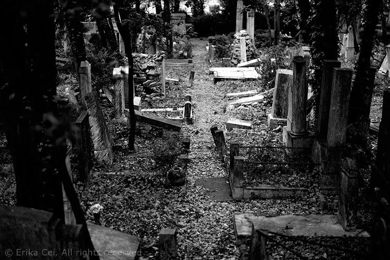 Cimitero ebraico Trieste