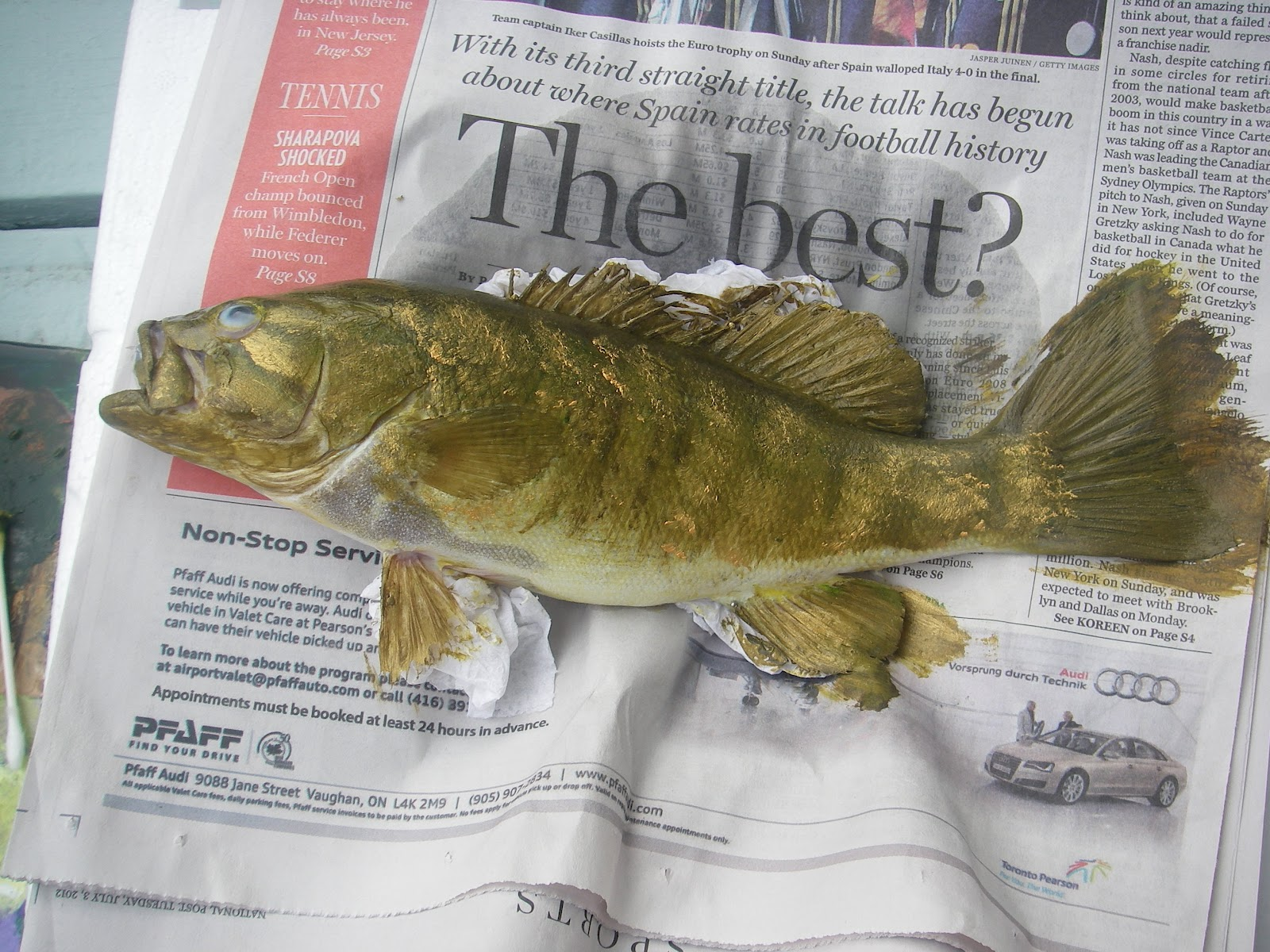 smallmouth bass research paper Phylogeography of smallmouth bass (micropterus dolomieu) and comparative myology of the black bass (micropterus, centrarchidae) william calvin borden bachelor of science in zoology.