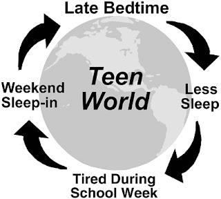 Image result for teenager sleep cycle