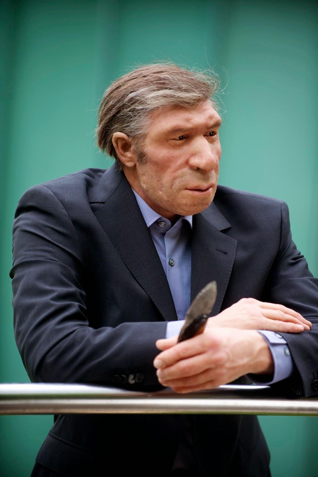 Q Significa Neanderthal Ese dato es una forma de medir