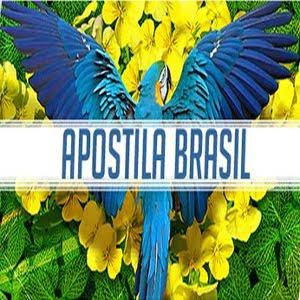 APOSTILA BRASIL