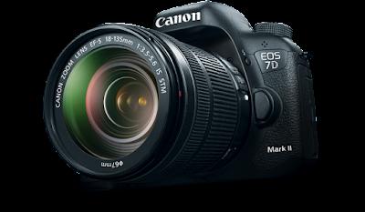 Canon, vinculación con el usuario