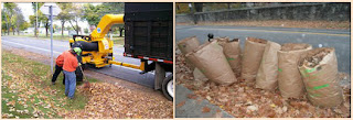 DPW crew working overtime to collect leaves left curbside. 